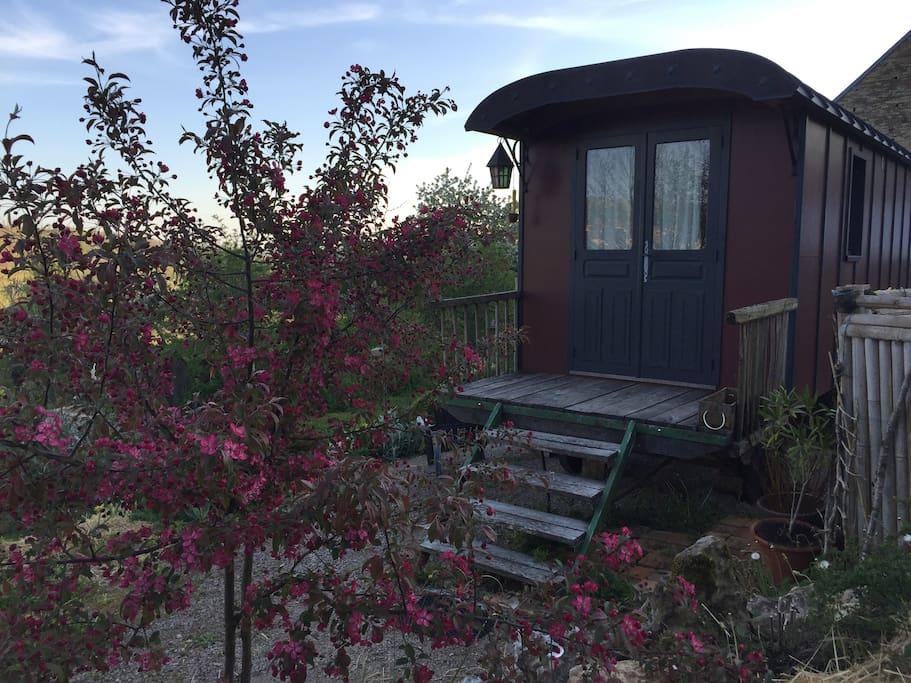 vagon de tren airbnb